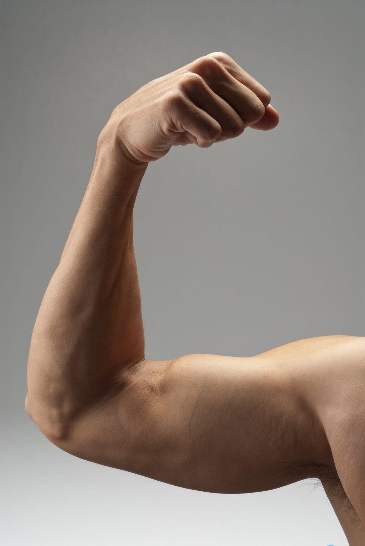 jak budować biceps